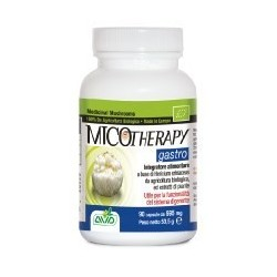 A.V.D. Reform - MICOTHERAPY GASTRO 90 cps