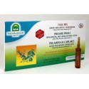 NATURA HOUSE - Fiale capelli rinforzanti PBX 12 fiale 10 ml.